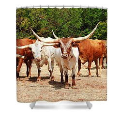 Some Long Horns Ya Got There Shower Curtain