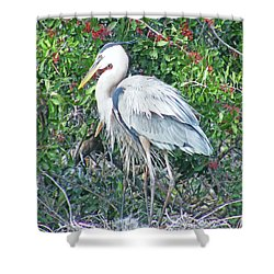 Shower Curtain featuring the digital art Heron Englewood Fl Rookery by Lizi Beard-Ward