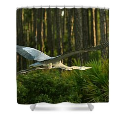 Shower Curtain featuring the photograph Heron In Flight by Rick Frost