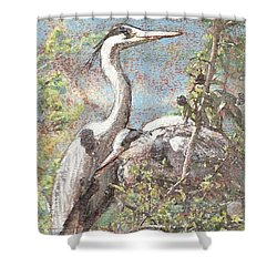 Herons Resting Shower Curtain