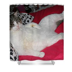 Hey Hey I'm Relaxing Here Shower Curtain by Kym Backland