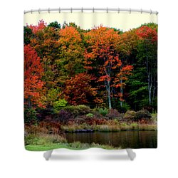 Hidden Valley Lake Shower Curtain by Karen Wiles