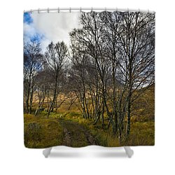Highland Highway Shower Curtain