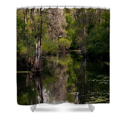 Shower Curtain featuring the photograph Hillsborough River In March by Steven Sparks
