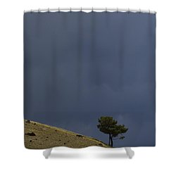 Shower Curtain featuring the photograph Hillside Tree by J L Woody Wooden