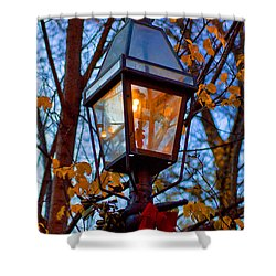 Holiday Streetlamp Shower Curtain by Joann Vitali