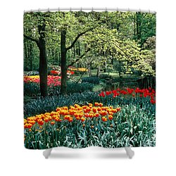Holland Kuekenhof Garden Shower Curtain by Dale P Hanson and Photo Researchers