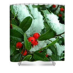 Holly In Snow Shower Curtain by Sandi OReilly