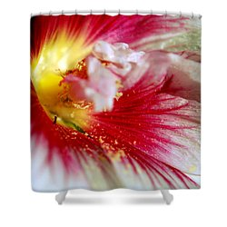 Hollyhock And The Ant Shower Curtain