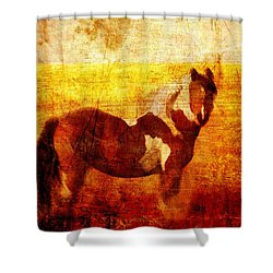 Home Series - Strength And Grace Shower Curtain by Brett Pfister