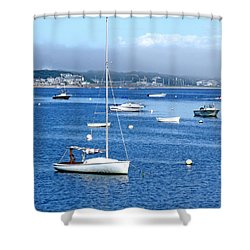 Homeward Bound Shower Curtain by Marilyn Holkham