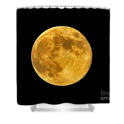 Honey Moon Close Up Shower Curtain