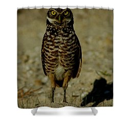 Hoo Are You? Shower Curtain