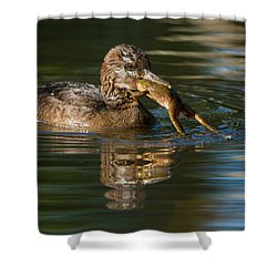 Hooded Merganser And Bullfrog Shower Curtain by Mircea Costina Photography