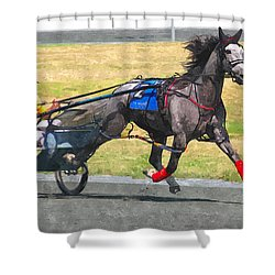 Shower Curtain featuring the photograph Hooray For The Gray by Alice Gipson