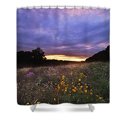 Hoosier Sunset - D007743 Shower Curtain by Daniel Dempster
