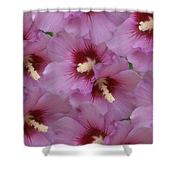 Horn Of Plenty Shower Curtain by Rick Friedle
