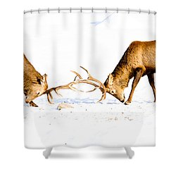 Horns A Plenty Shower Curtain by Cheryl Baxter