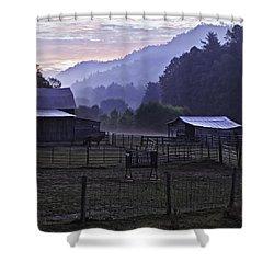 Horse At Home - North Carolina Farm Scene Shower Curtain by Rob Travis