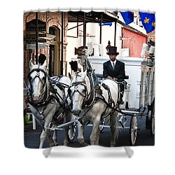 Horse Drawn Carriage Color Shower Curtain by Kathleen K Parker