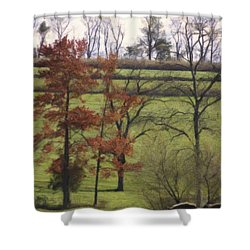 Horse On The Pasture Shower Curtain by Trish Tritz