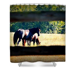 Shower Curtain featuring the photograph Horse Photography by Peggy Franz