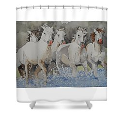 Horses Thru Water Shower Curtain