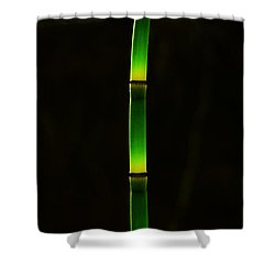 Horsetail  Shower Curtain