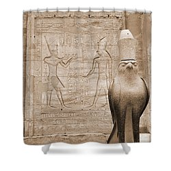 Horus Temple Shower Curtain by Donna Corless