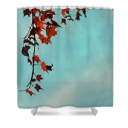 Hot And Cold Shower Curtain by Aimelle