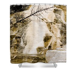 Shower Curtain featuring the photograph Hot Spring Pine by J L Woody Wooden