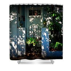House Door 11 In Charleston Sc  Shower Curtain by Susanne Van Hulst