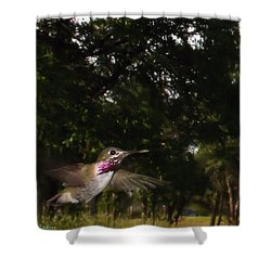 Hummer In Flight Shower Curtain by Joyce Dickens