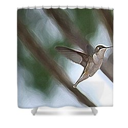 Shower Curtain featuring the photograph Hummingbird by Donna  Smith