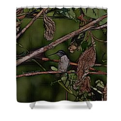 Shower Curtain featuring the photograph Hummingbird Waiting For Dinner by EricaMaxine  Price