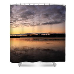 Hungry Fish At Sunrise Shower Curtain by Catie Canetti