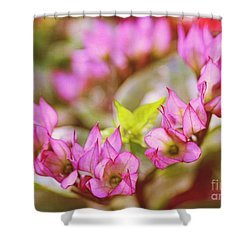 Hydrangea Shower Curtain by Judi Bagwell