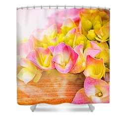 Hydrangeas In Bloom Shower Curtain by Elaine Manley