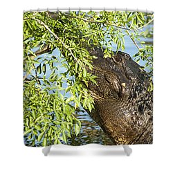 I Can See You Shower Curtain by Carolyn Marshall