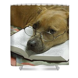 I Read My Bible Every Day Shower Curtain by Renee Trenholm