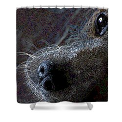 I See You Shower Curtain by One Rude Dawg Orcutt