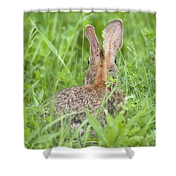Shower Curtain featuring the photograph I Still See You by Jeannette Hunt