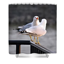 I Told You   Im Tired Of Fish Damnit Shower Curtain by Michael Frank Jr