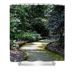 I Want To Walk With You Shower Curtain by Maria Urso