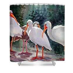 Ibis - Youngster Among Us. Shower Curtain