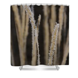 Ice Crystals On Tall Grass Shower Curtain by Mick Anderson