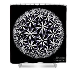 Ice Flowers Shower Curtain by Danuta Bennett