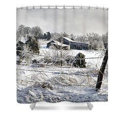 Ice Storm - D004825a Shower Curtain by Daniel Dempster