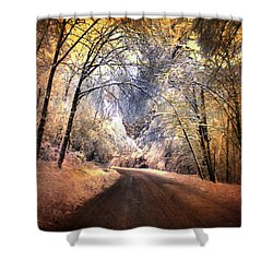 Icy Road Shower Curtain by Jai Johnson