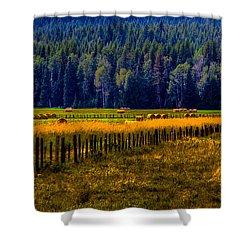 Idaho Hay Bales  Shower Curtain by David Patterson
